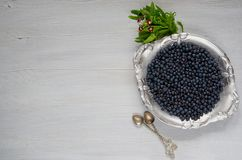 Fresh blueberry on the vintage silver plate ready to eat on the gray kitchen background with copy space. Healthy food concept stock image