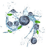 Fresh blueberry with water splash Stock Photo