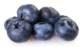 Fresh blueberry on white background royalty free stock photography