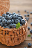 Fresh blueberry Royalty Free Stock Image