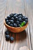 Fresh blueberry Royalty Free Stock Image