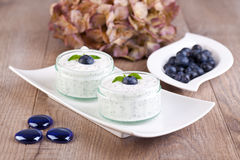 Fresh blueberry yogurt Stock Image