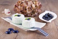 Fresh blueberry yogurt Royalty Free Stock Photos