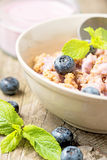 Fresh blueberry yogurt with granola and mint. On a background Royalty Free Stock Photo