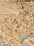 Fresh board and wood shavings Royalty Free Stock Photography