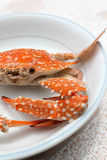 Fresh boiled crab Stock Photos