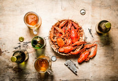 Fresh boiled crawfish with beer. Royalty Free Stock Image