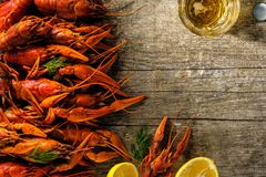 Fresh boiled crawfish with a mug of beer on a wooden table. Royalty Free Stock Image