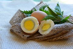 Fresh eggs closeup on white background stock photography