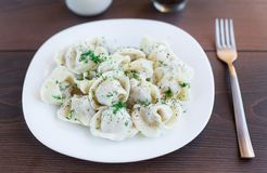 Fresh boiled meat dumplings served with dill Royalty Free Stock Image