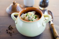 Fresh boiled meat dumplings served with dill Stock Images