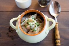 Fresh boiled meat dumplings served with dill Stock Photos