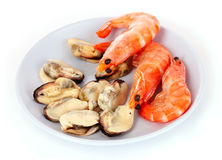 fresh boiled mussels and shrimps Royalty Free Stock Images