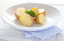 Fresh boiled potatoes Royalty Free Stock Photos