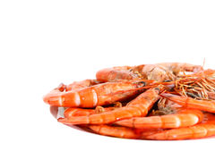 Fresh boiled shrimp Stock Image