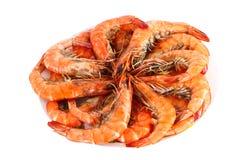 Fresh boiled shrimp Stock Image