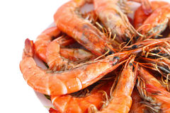 Fresh boiled shrimp Stock Images
