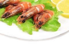Fresh boiled shrimps with lemon. Royalty Free Stock Photos
