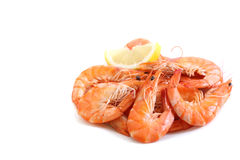 Fresh boiled shrimps  Stock Photography