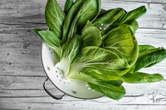 Fresh Bok Choy Royalty Free Stock Photography