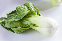 Fresh Bok Choy Stock Images