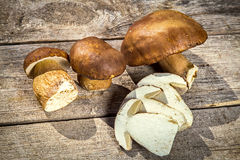 Fresh Boletus Edilus mushrooms on a wooden table Royalty Free Stock Image