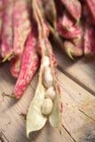 Fresh borlotti beans. On a wooden table Stock Images