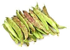 Fresh Borlotti Beans Stock Photo