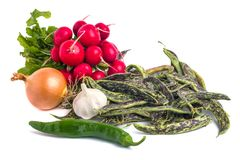 Fresh Borlotti Beans, radish and ather vegetable on a white back. Gronud Stock Photography