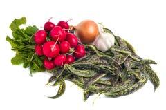 Fresh Borlotti Beans, radish and ather vegetable on a white back. Gronud Stock Images