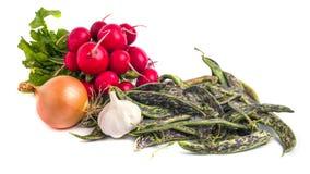 Fresh Borlotti Beans, radish and ather vegetable on a white back. Gronud Stock Photos