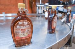 A fresh bottle of maple syrup comes off the line at Ben`s Sugar Shack in Temple, N.H., USA, March 24, 2018. Royalty Free Stock Photography
