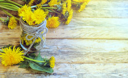 Fresh bouquet of dandelions, glass jar Stock Photos