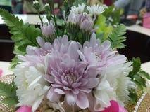 Fresh bouquet. Stock Photos