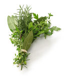 Fresh bouquet garni, bunch of herbs Royalty Free Stock Photography