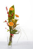 Fresh bouquet from orange gerbers Stock Image