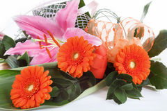 Fresh bouquet from orange gerbers Royalty Free Stock Photos