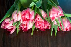 Fresh bouquet of the pink tulips. Pink tulips on a dark wooden  background Royalty Free Stock Image