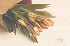 A fresh bouquet of spring tulips stock photo