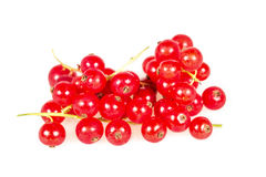 Fresh bow red currant on the white isolated background Stock Photography