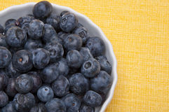 Fresh Bowl of Blueberries Stock Images