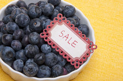 Fresh Bowl of Blueberries Stock Photography