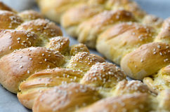Fresh braided bread Stock Image