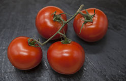 Fresh branch of red Sicilian ripe tomatoes on a stone background Royalty Free Stock Image