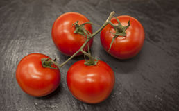Fresh branch of red Sicilian ripe tomatoes on a stone background Stock Image