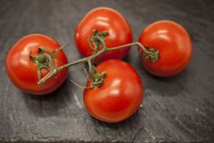 Fresh branch of red Sicilian ripe tomatoes on a stone background Royalty Free Stock Photos