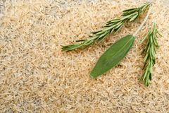 Fresh branches of rosemary and a sage leaf on a background of ri. Ce cereals background royalty free stock photography