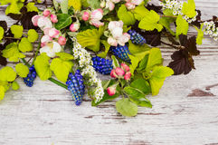 Fresh branches and spring flowers on a white wooden background. Physocarpus opulifolius diabolo and luteus, blue muscari, white spirea and flowering branches Royalty Free Stock Photo