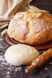 Fresh bread. Royalty Free Stock Images