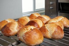 Fresh bread. Ten fresh breads in front of the oven, on wagon royalty free stock photos